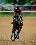 April 28, 2021: Medina Spirit gallops in preparation for the Kentucky Derby at Churchill Downs in Louisville, Kentucky on April 28, 2021. EversEclipse Sportswire/CSM