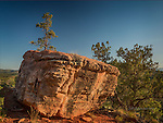 Boulder along Mescal Trail, Arizona