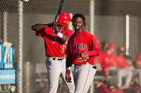 AZL Angels outfielder D'Shawn Knowles (20) before an Arizona League game against the AZL Giants Black at the San Francisco Giants Training Complex on July 1, 2018 in Scottsdale, Arizona. The AZL Giants Black defeated the AZL Angels by a score of 4-2. (Zachary Lucy/Four Seam Images)