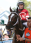 July 27, 2014: Untapable, the only filly among the Haskell contenders, walks in the paddock before the race, Rosie Napravnik up. Bayern, Martin Garcia up, wins the Haskell Invitational at Monmouth Park in Oceanport, NJ.  Trainer is Bob Baffert; owner is Kaleem Shah, Inc. ©Joan Fairman Kanes/ESW/CSM