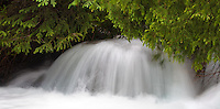 Brook at the Blue Lakes Trailhead, near Ridgway, Colorado.<br /> <br /> Canon EOS 5D, 70-200mm f/2.8L lens