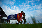 FUCHU,JAPAN-NOVEMBER 26: Cheval Grand,ridden by Hugh Bowman, after winning the Japan Cup at Tokyo Racecourse on Nobember 26,2017 in Fuchu,Tokyo,Japan (Photo by Kaz Ishida/Eclipse Sportswire/Getty Images)