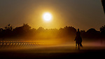 AUG 24: Scenes from training at Saratoga Racecourse in New York on August 24, 2019. Evers/Eclipse Sportswire/CSM