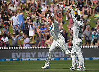 NZ's Kyle Jamieson unsuccessfully appeals for a hat-trick lbw during day two of the second International Test Cricket match between the New Zealand Black Caps and West Indies at the Basin Reserve in Wellington, New Zealand on Friday, 11 December 2020. Photo: Dave Lintott / lintottphoto.co.nz