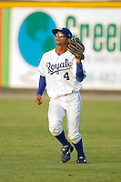 Right fielder Derek Rodriguez #4 of the Burlington Royals catches a fly ball against the Bristol White Sox at Burlington Athletic Stadium August 13, 2010, in Burlington, North Carolina.  Photo by Brian Westerholt / Four Seam Images