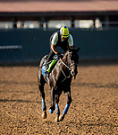 AUGUST 27, 2021: Medina Spirit gallops at Del Mar Fairgrounds in Del Mar, California on August 27, 2021. Evers/Eclipse Sportswire/CSM