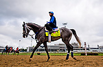 LOUISVILLE, KY - MAY 03: Mohaymen, trained by Kiaran McLaughlin and owned by Shadwell Stable, exercises and prepares during morning workouts for the Kentucky Derby and Kentucky Oaks at Churchill Downs on May 3, 2016 in Louisville, Kentucky. (Photo by Scott Serio/Eclipse Sportswire/Getty Images)