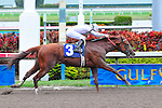 31 January 2010:  Drosselmeyer with jockey Kent Desomeaux wins the sixth race at Gulfstream Park in Hallandale Beach, Florida.