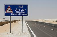 EGYPT, Farafra, Nationalpark White Desert , chalk rocks shaped by wind and sand erosion, tamarc road to Cairo / AEGYPTEN, Farafra, Nationalpark Weisse Wueste, durch Wind und Sand geformte Landschaft, Strasse nach Kairo