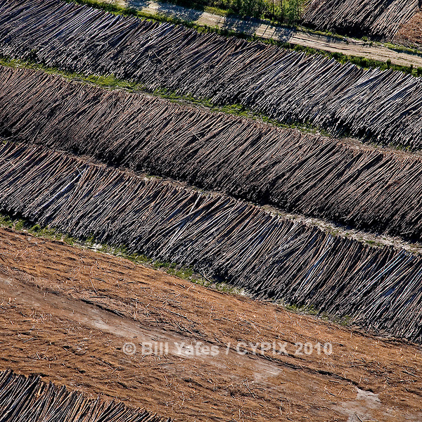 Cypress Trees ready for mulching US 17 North of Palatka Florida helicopter aerial