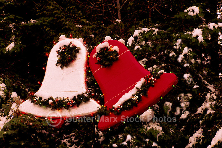 Christmas Bells on Snow Covered Coniferous Branches