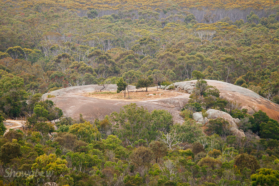 Image Ref: CA462<br /> Location: You Yangs<br /> Date of Shot: 17th Dec 2016