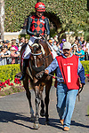 DEL MAR, CA  AUGUST 18: #1 Prince Earl, ridden by Geovanni Franco, in the paddock before the Del Mar Mile (Grade ll) on August 18, 2019 at Del Mar Thoroughbred Club in Del Mar, CA.  ( Photo by Casey Phillips/Eclipse Sportswire/CSM)