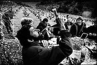 """Europe/France/Languedoc-Roussillon/66/Pyrénées-Orientales/Banyuls-sur-Mer: lors d'une """"Cargolade"""", repas d'escargots grillés avec aïoli, dans les vignes lors du dimanche de Pâques - Boire au pourou [Non destiné à un usage publicitaire - Not intended for an advertising use]"""