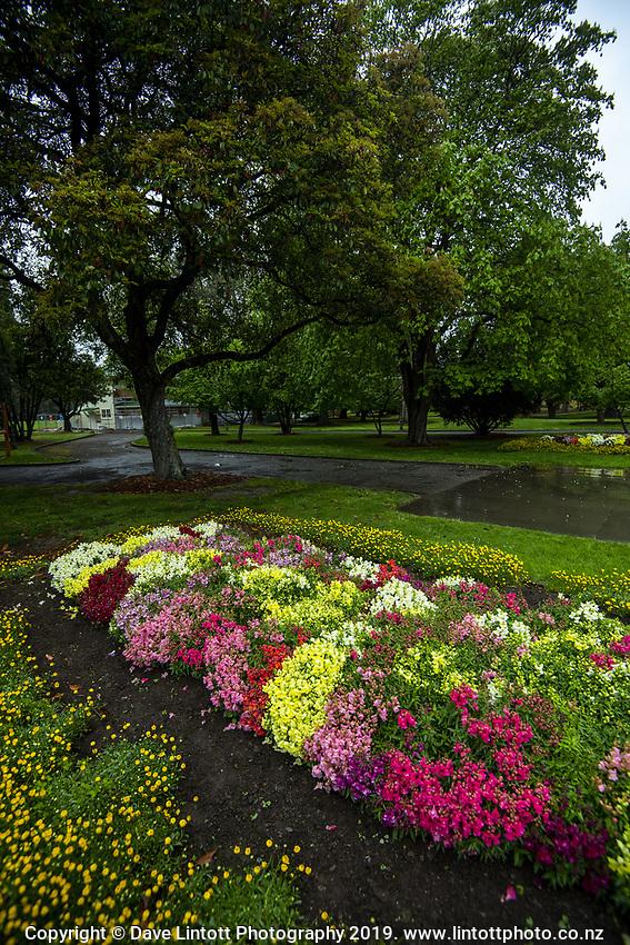 Queen Elizabeth Park in Masterton, New Zealand on Wednesday, 16 October 2019. Photo: Dave Lintott / lintottphoto.co.nz