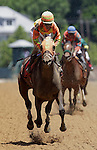 Super Espresso, Ramon Dominguez up, wins the 19th running of the Allaire Dupont Distaff Stakes (gr. 3) at Pimlico Race Course, Baltimore, MD. The 4-yr-old Medaglia D'Oro filly is trained by Todd Pletcher. (Photo by Joan Fairman Kanes/Eclipse Sportswire)