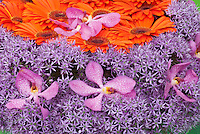 Clashing orange & purple flowers & orchids arrangement
