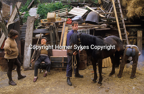 Hackney, London. 1980's <br /> Johnny Pinto's totters horse yard, home to local rag-and-bone men. He's discussing a bit of business with a client, while a mobile farrier shoes a thinning rag-and-bone man's horse.