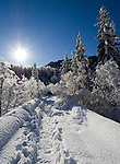 Germany, Bavaria, Upper Bavaria, Winter in Werdenfelser Land: winter scenery at Upper Isar Valley