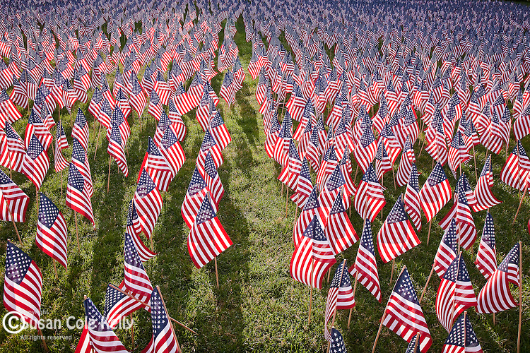 American flags on Boston Common commemorate Massachuestts military heroes, Boston, MA, USA