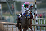 ARCADIA, CA - NOVEMBER 05: Arrogate #10, ridden by Mike Smith, after winning the Breeders' Cup Classic during day two of the 2016 Breeders' Cup World Championships at Santa Anita Park on November 5, 2016 in Arcadia, California. (Photo by Kaz Ishida/Eclipse Sportswire/Breeders Cup)
