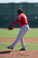 Cincinnati Reds relief pitcher Domingo Tapia (86) during a Minor League Spring Training game against the Chicago White Sox at the Cincinnati Reds Training Complex on March 28, 2018 in Goodyear, Arizona. (Zachary Lucy/Four Seam Images)