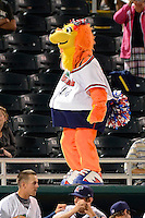 Fort Myers Miracle mascot entertaining fans during a game against the Jupiter Hammerheads on April 9, 2013 at Hammond Stadium in Fort Myers, Florida.  Fort Myers defeated Jupiter 1-0.  (Mike Janes/Four Seam Images)