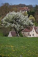 Europe/Europe/France/Midi-Pyrénées/46/Lot/Rignac: Maisons du Village