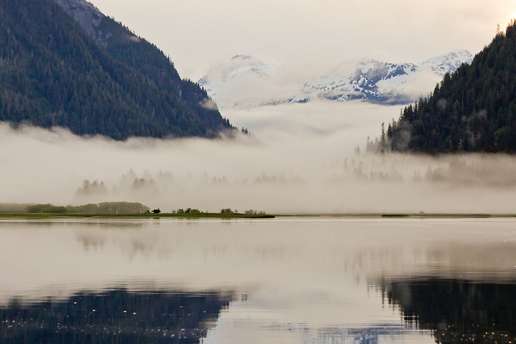 Fog in the Khutzeymateen Valley