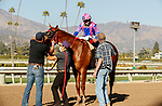 ARCADIA, CA  MARCH 6: #6 Brickyard Ride, ridden by Alexis Centeno, returns to the connections after winning the San Carlos Stakes (Grade ll) on March 6, 2021 at Santa Anita Park in Arcadia, CA.  (Photo by Casey Phillips/EclipseSportswire/CSM)
