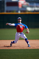 Jaron Ross during the Under Armour All-America Tournament powered by Baseball Factory on January 18, 2020 at Sloan Park in Mesa, Arizona.  (Zachary Lucy/Four Seam Images)