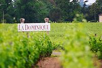 A sign in the vineyard saying Chateau La Dominique Saint Emilion Bordeaux Gironde Aquitaine France