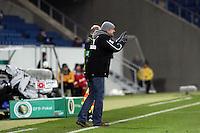 Trainer Holger Stanislawski (Hoffenheim)