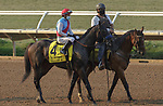 DEL MAR, CA  SEP 6: #4 Princess Noor, ridden by Victor Espinoza, in the post parade of the Del Mar Debutante (Grade 1) at Del Mar Thoroughbred Club on September 6, 2020 in Del Mar, CA. .(Photo by Casey Phillips/Eclipse Sportswire/CSM.