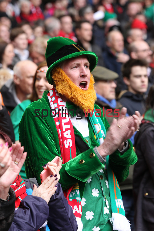 Patriotic Ireland fans in fancy dress.<br /> RBS 6 Nations<br /> Wales v Ireland<br /> Millennium Stadium<br /> 14.03.15<br /> ©Steve Pope - SPORTINGWALES