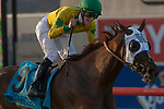 DEL MAR, CA  SEPTEMBER 1: #9 Vasilika, ridden by a celebrating Flavien Prat, wins the John C. Mabee Stakes (Grade ll), on September 1, 2018 at Del Mar Thoroughbred Club in Del Mar, CA.(Photo by Casey Phillips/Eclipse Sportswire/Getty ImagesGetty Images