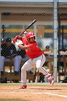 Philadelphia Phillies Freddy Francisco (13) at bat during an Instructional League game against the Detroit Tigers on September 19, 2019 at Tigertown in Lakeland, Florida.  (Mike Janes/Four Seam Images)