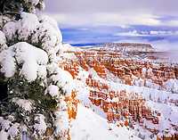 hoodoo formations in fresh snow, Bryce Canyon National Park, Utah, USA