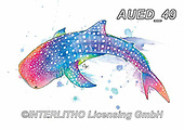 Carlie, REALISTIC ANIMALS, REALISTISCHE TIERE, ANIMALES REALISTICOS, paintings+++++,AUED49,#A#, EVERYDAY,wale shark