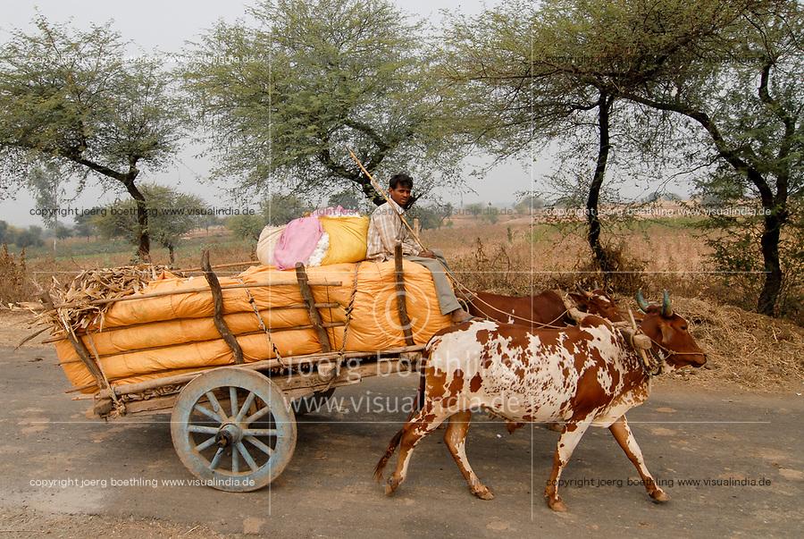 INDIA Madhya Pradesh , cotton farming, farmer transport cotton harvest by bullock cart  to auction/ INDIEN Madhya Pradesh , Baumwollanbau, Farmer transportiert Baumwollernte mit Ochsengespann zur Auktion