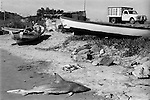 Shark beached washed up and dead Mazatlan Mexico Fisherman sits in his wooden rowing boat. 1970s. Mexican state of Sinaloa 1973
