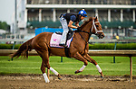 LOUISVILLE, KY - MAY 03: Monomoy Girl, trained by Brad Cox, exercises in preparation for the Kentucky Oaks at Churchill Downs on May 3, 2018 in Louisville, Kentucky. (Photo by Alex Evers/Eclipse Sportswire/Getty Images)