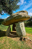 Carreg Coetan Quoit is a megalithic burial dolmen from the Neolithic period, circa 3000 BC, near Newport, North Pembrokeshire, Wales