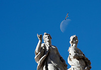 Un gabbiano vola sopra le statue del colonnato della Basilica con la luna sullo sfondo durante l'udienza generale del mercoledì in Piazza San Pietro. Città del Vaticano, 19 aprile  2017.<br /> A seagull flies over statues with the moon in the background during the weekly general audience at St Peter's square at the Vatican, on April 19 2017.<br /> UPDATE IMAGES PRESS/Isabella Bonotto<br /> <br /> STRICTLY ONLY FOR EDITORIAL USE