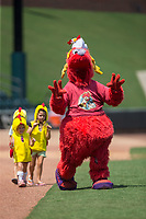 "Winston-Salem Dash mascot ""Bolt"" leads a group of young children in ""The Chicken Dance"" between innings of the Carolina League game against the Salem Red Sox at BB&T Ballpark on July 23, 2017 in Winston-Salem, North Carolina.  The Dash defeated the Red Sox 11-10 in 11 innings.  (Brian Westerholt/Four Seam Images)"