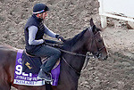 October 31, 2019: Breeders' Cup Juvenile Turf Sprint entrant Kimari, trained by Wesley A. Ward, exercises in preparation for the Breeders' Cup World Championships at Santa Anita Park in Arcadia, California on October 31, 2019. John Voorhees/Eclipse Sportswire/Breeders' Cup/CSM