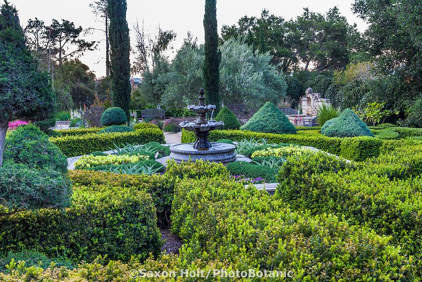 Pruned boxwood hedges; Leaning Pine Arboretum, San Luis Obispo, California garden