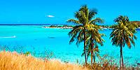 Turquoise lagoon, palm trees, and overwater bungalows, on Bora Bora island, honeymoon destination, near Tahiti, French Polynesia, Pacific Ocean