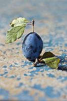 Gastronomie générale:  Quetsche ou  Prune de Damas, - Stylisme : Valérie LHOMME