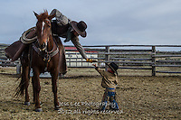 High Five Cowboys working and playing. Cowboy Cowboy Photo Cowboy, Cowboy and Cowgirl photographs of western ranches working with horses and cattle by western cowboy photographer Jess Lee. Photographing ranches big and small in Wyoming,Montana,Idaho,Oregon,Colorado,Nevada,Arizona,Utah,New Mexico. Fine Art Limited Edition Photography Of American Cowboys and Cowgirls by Jess Lee